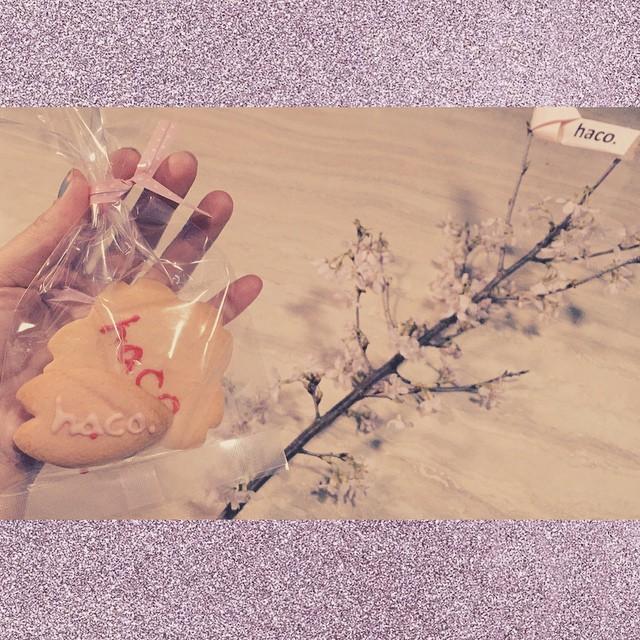 可愛いクッキーと,今日開花した桜を今日の撮影の写真は,近日webの『haco.さくらまつり』にUPされるよ--- #haco #hacotd #sakura #spring