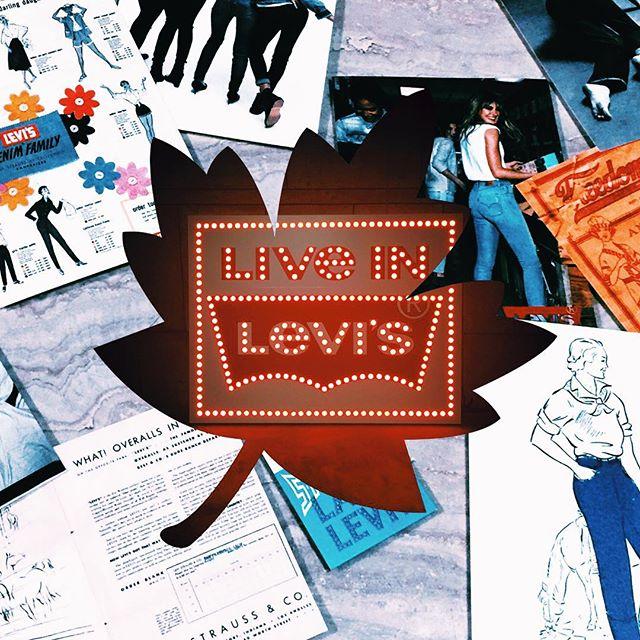 Levi'sの新作denimについて詳しくblog書いてみたので,是非denim好きのみんな見てみてね〜️ http://ellegirl.jp/blogs/izumi/2015/09/live-in-levis/#ellegirl #blog #denim#levis