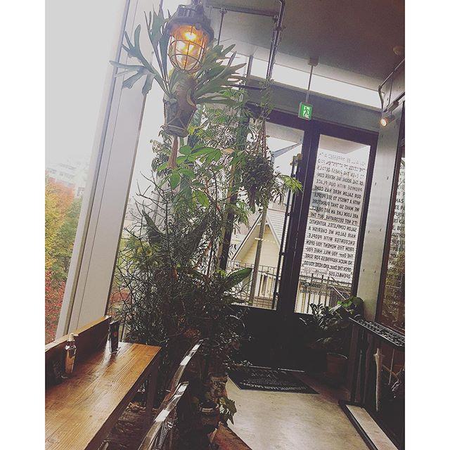今日はGINZA2月号の撮影でall self!︎私のやりたかったお仕事の一つ。大好きな場所に行って、大好きな方々とのお仕事はやっぱり最高だなぁ...#ginzamagazine #shooting#door#daikanyama#salon#place#love