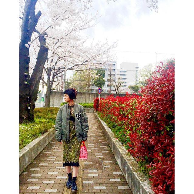 ...#IZUMIsfashion #ootd #outfitoftheday #spring #sakura #WEAR #japan#uniqlo #ma1 #kenzo #drmartens