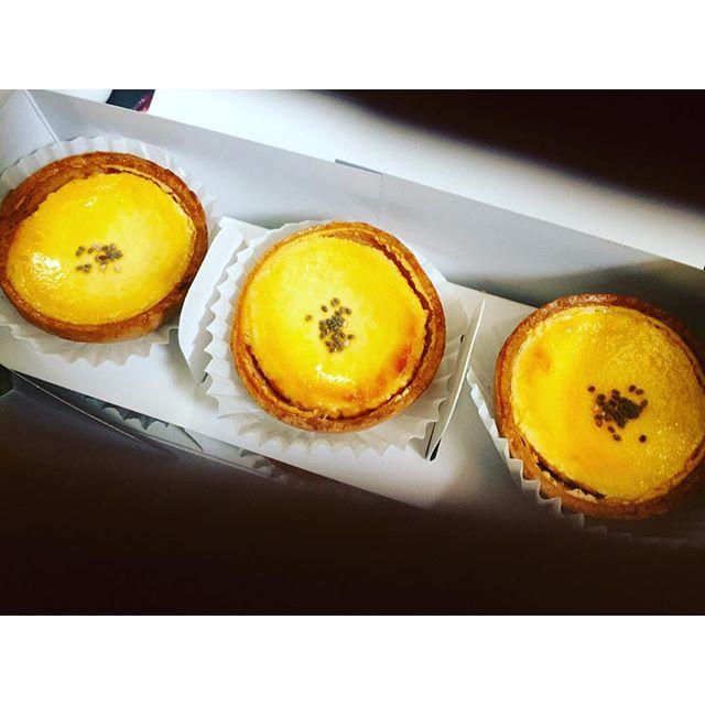 いただいたチーズタルトがとってもとっても美味しかった.、、、#nagoya #チーズタルト