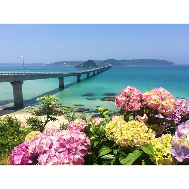 従姉妹の結婚式のため山口県へ🏼♡!こんなこんな素敵な場所があるなんて、本当に本当に感動した!!!近くだったらすぐにでもまた行きたい!みんな、今日も一日楽しみながらがんばろうね!️、、、#山口県 #角島大橋 #海#japan #summer #beautiful