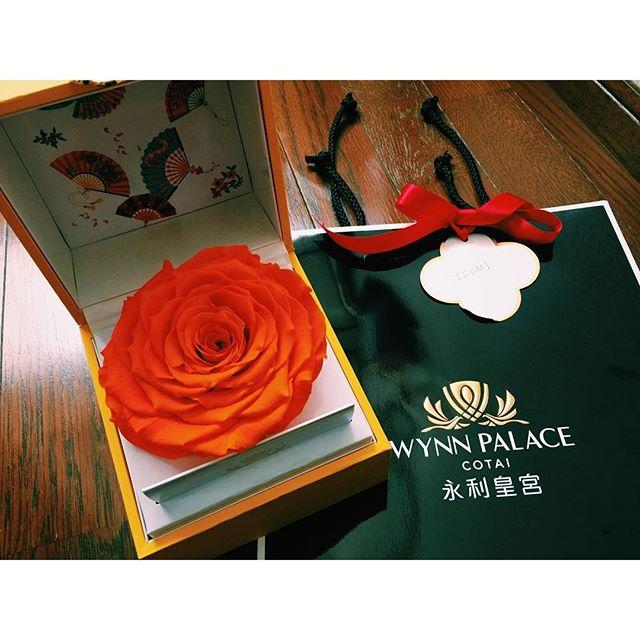 """最近海外️に行きたい欲が増している私ですが、マカオに新しくOpenするラグジュアリーホテル""""ウィンパレス"""" からひと足お先に素敵な gift をいただきました!ホテルには、従来にないスケールで花々が活用されているみたいで、有名アーティストであるプレストン・ベイリー氏のデザインされた作品が入り口に展示されているみたいだよ!あ〜観に行きたい!!!http://www.wynnpalace.com/jp #WynnPalace #flower #gift#UnveilingWynnPalace"""