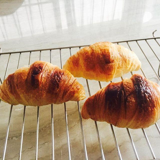 .good morning 冷凍の生地から20分オーブンで焼くだけでお家で焼きたてクロワッサン💭とっても軽くてふわふわサクサク何個でも食べれてしまうよ🙄これはいいなぁ。お菓子感覚でチョコを挟んだりとかね😙💭#home #bread #freshlybaked #croissant